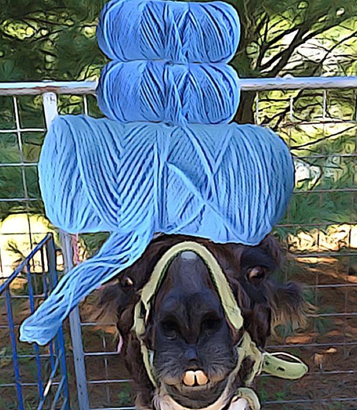 Llama Unraveled